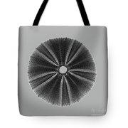 Sea Urchin 1 Tote Bag