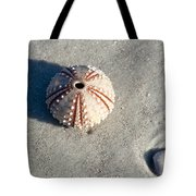 Sea Urchin And Shell Tote Bag
