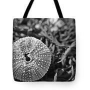 Sea Urchin On Seaweed Tote Bag by David Rucker