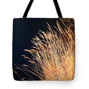Seagrass In Gold Tote Bag