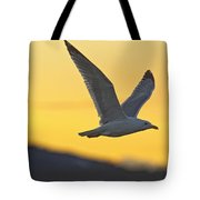 Seagull Flying At Dusk With Sunset Tote Bag by Robert Postma