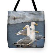 Seagull Fusion Tote Bag