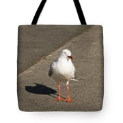 Seagull In The Summer Sun Tote Bag