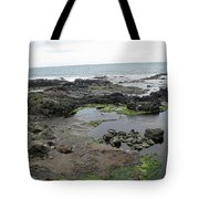 Seagull Resort Tote Bag