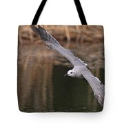 Seagull Seagull On The Move Tote Bag