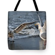 Seagull Treasures Tote Bag