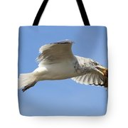 Seagull With Snail Tote Bag