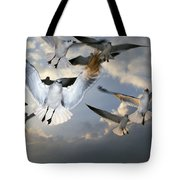 Seagulls In Flight Tote Bag by Natural Selection Ralph Curtin