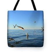 Seagulls Over Lake Michigan Tote Bag