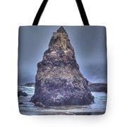 Seagull's Perch Tote Bag