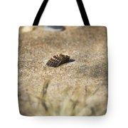 Seahells V3 Tote Bag