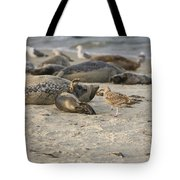 Seal 2 Tote Bag