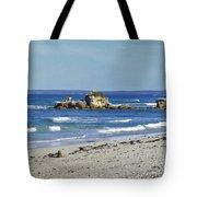 Seal Bay Beach Tote Bag