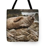 Seal Old Timers Tote Bag