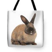 Seal-point Rabbit Tote Bag