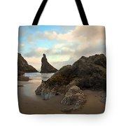 Seal Rock Oregon Tote Bag