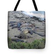 Seal Spa. Sand Bath Tote Bag