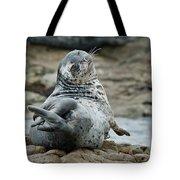 Seal Stretch Tote Bag