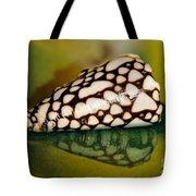 Seashell Wall Art 4 - Conus Marmoreus Tote Bag