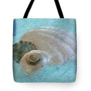 Seashells In Aqua Tote Bag