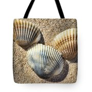 Seashells V2 Tote Bag