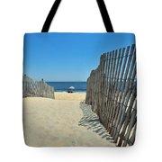seashore 100 Cape Henlopen Beach walkway Tote Bag
