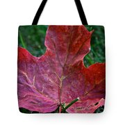 Seasonal Changes Tote Bag