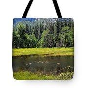 Seasonal Duck Pond Tote Bag