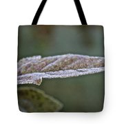 Seasonal Frost Tote Bag