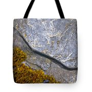 Seaweed And Boulder Tote Bag