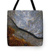 Seaweed And Rock Tote Bag
