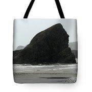 Sebastian Beach California Tote Bag