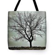 Secrets Of The Roots Tote Bag