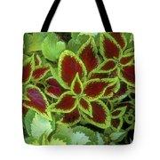 Sedona Floral Tote Bag
