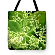 Sedum Droplets Tote Bag