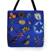 Seed Diversity, Barro Colorado Island Tote Bag