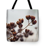 Seed Pods 2 Tote Bag