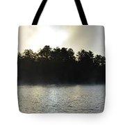 Seine River Beauty Tote Bag