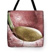 Sem Of A Strawberry Seed Tote Bag