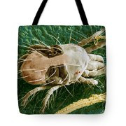 Sem Of Two-spotted Spider Mite Tote Bag