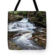 Seneca Falls Tote Bag