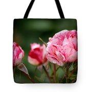 Sentimental Rose Tote Bag