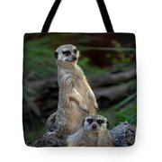 Sentry Tote Bag by Skip Willits