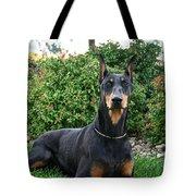 Sentry Tote Bag