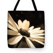 Sepia Daisy Flower Tote Bag