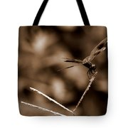 Sepia Dragonfly Tote Bag
