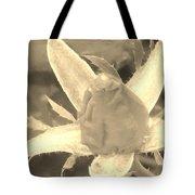 Sepia Rose Bud Tote Bag
