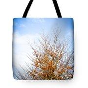 September Sky Tote Bag