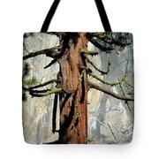 Sequoia And El Capitan Tote Bag