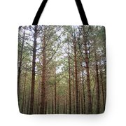 Serene Forest Tote Bag